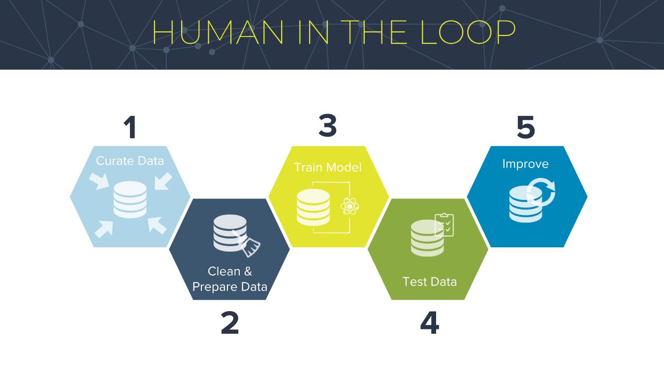 Human In The Loop